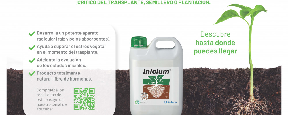 Demonstration assay of the properties of the peptic biostimulant Inicium®